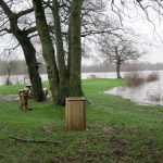 Lieu de rencontres coquines : Parking des étangs d'Apigné